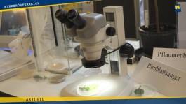 """""""Science Academy Niederösterreich"""" startet ab Herbst 2019"""