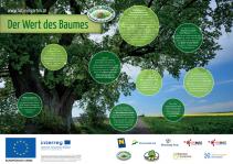 Der Wert des Baumes - Plakat - Natur im Garten